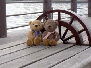 クマのルーニー 海