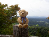 クマのルーニー 滝根村をのぞむ