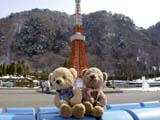 クマのルーニーとミニ東京タワー