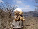 クマのルーニーと富士山