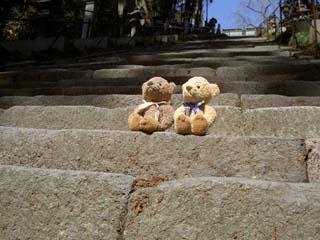 クマのルーニー 塩竃神社の参道