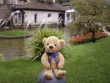 クマのルーニー 芝生の上のルーニー・バニラ
