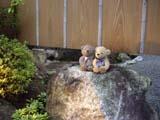 クマのルーニー ライトアップされた別邸「奥の樹々」入口