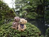 クマのルーニー 庭