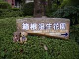 クマのルーニー 「箱根湿性花園 開園期間3月20日-11月30日」看板