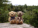 クマのルーニー 休憩所
