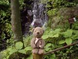 クマのルーニー 滝とルーニー・チョコ