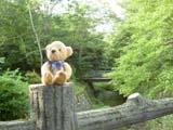 クマのルーニー 川