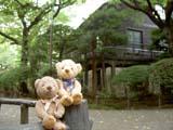 クマのルーニー 旧乃木邸