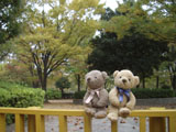 クマのルーニー 公園入口