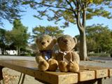 クマのルーニー ベンチ