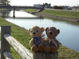 クマのルーニー 川沿いの道