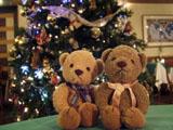 クマのルーニー クリスマスツリー