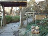 クマのルーニー ぼたん園
