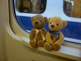 クマのルーニー 新幹線の中で