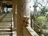 クマのルーニー 長谷寺 登廊