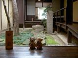 クマのルーニー ならまち格子の家