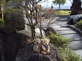 クマのルーニー 若神楼 岩