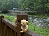 クマのルーニー 紅の吊橋