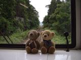クマのルーニー 線路