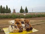クマのルーニー 集合写真