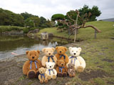 クマのルーニー 池 ルーニー集合
