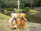 クマのルーニー 池 ルーニー並んで
