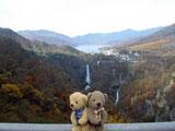 クマのルーニー 華厳の滝
