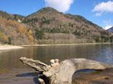 クマのルーニー 刈込湖
