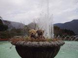 クマのルーニー 噴水