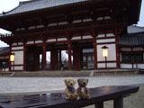 クマのルーニー 東大寺