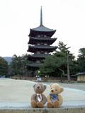 クマのルーニー 興福寺 五重塔