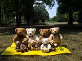 クマのルーニー Roony 10体