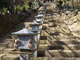 クマのルーニー 大山寺石段