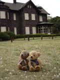 クマのルーニー 旧古河庭園洋館