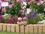 クマのルーニー 花壇