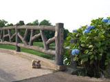 クマのルーニー 橋