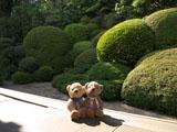 クマのルーニー 長勝寺 庭園