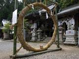 クマのルーニー 茅の輪