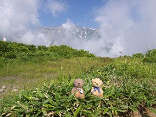 クマのルーニー 小日向山方面