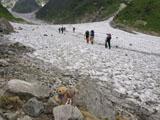 クマのルーニー 大雪渓