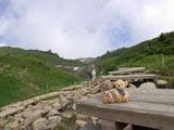 クマのルーニー トレッキングコース