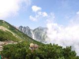 クマのルーニー 三連峰