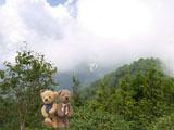 クマのルーニー 小遠見山 山頂