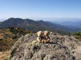 クマのルーニー 山々