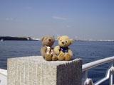 クマのルーニーと海