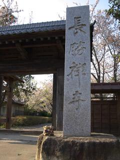 クマのルーニーと長勝寺 門
