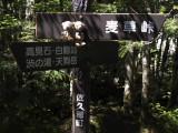 クマのルーニーと案内板