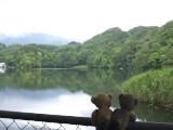 クマのルーニーと松原湖