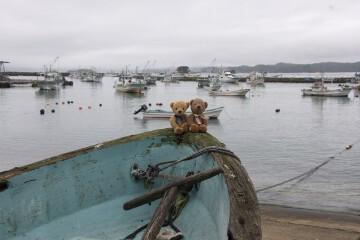 入り江と船